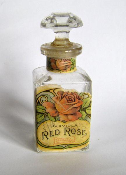 Parviola - Red Rose
